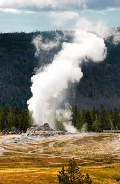 Upper Geyser Basin. Yellowstone National Park, Wyoming.