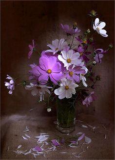 ** Brown & purple