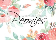 Watercolor Peonies @photoshoplady
