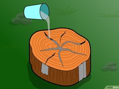How to Preserve a Tree Stump. A tree stump can add a rustic touch to your home, especially if it has a nice wood grain. You may come across a tree stump in the forest or have 1 cut at your local lumber yard and wonder how you can preserve. Tree Stump Furniture, Tree Stump Decor, Tree Trunk Table, Log Furniture, A Table, Tree Stumps, Furniture Ideas, Outdoor Projects, Wood Projects