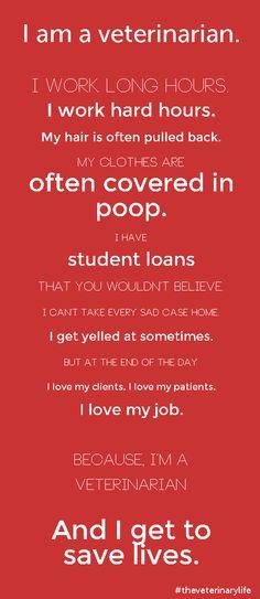 I am a vet.