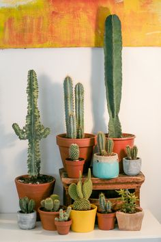 Awesome and heart winning cactus plants are awesome enough to make your space more vibrant look. Awesome and heart winning cactus plants are awesome enough to make your space more vibrant look. Indoor Garden, Garden Plants, Indoor Plants, Pot Plants, Cactus Pot, Cactus Flower, House Plants Decor, Plant Decor, Cactus Plante
