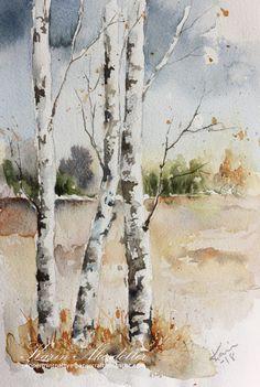 Sunday Watercolor - Birch Trees