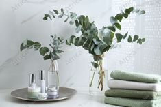 Fresh eucalyptus branches and cosmetic products on countertop in bathroom. Buy Creativity & Imagination. Take a look at what the world's best photographers have to offer at africa-images.com Eucalyptus Branches, Bathroom Images, Best Photographers, Countertops, Imagination, Cherry, Creativity, Africa, Cosmetics