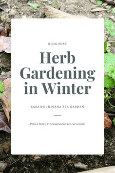 Winter herb gardening can be intimidating for some beginner gardeners. Knowing when to prune, what can grow and how to keep them healthy can be a lot to think about. This post breaks down each of those concerns and will give you the tool you need for this next season. Winter herb gardening | How to grow herbs in the winter | How to grow herbs in winter | Getting your garden ready for winter | Indoor herb gardening | Indoor herb gardening during the winter | growing herbs for beginners Gardening Zones, Herb Gardening, Container Gardening, Planting, Best Herbs To Grow, Growing Herbs, Autumn Garden, Easy Garden, Raised Bed