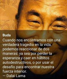 Dalai Lama, Spiritual Life, Spirituality, Ads, Yoga, Sayings, Quotes, Karma, Twitter