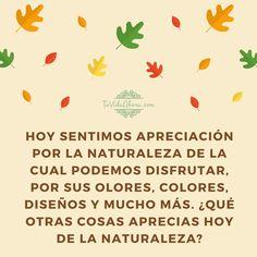¿Qué otras cosas aprecias hoy de la naturaleza? #agradecimiento #AbrahamHicks #apreciación @jallison3