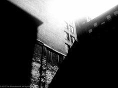 Light in between shadows