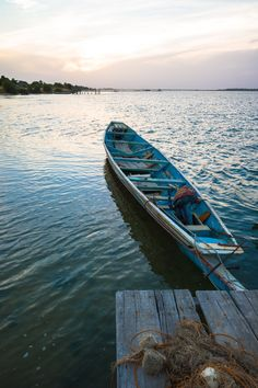 Safari, Surfboard, Boat, Travel, Dinghy, Surfboards, Boats, Surfboard Table, Ship