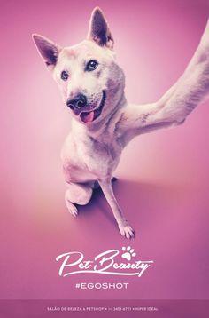 PetBeauty Pet Shop & Salon: #egoshot