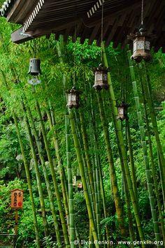 Copper Lanterns at Hase-dera Temple, Kamakura, Kanagawa, Japan