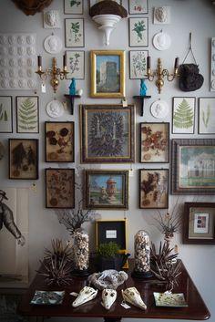 Cabinet of Curiosities installment by Ben Pentreath and Bridie Hall, Ben Pentreath Ltd.