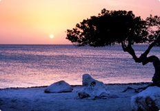 Aruba vacation deals from JetBlue Getaways.