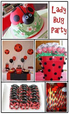 Everyday Art Ladybug Birthday Party Inspiration Love The Pretzels And Streamers