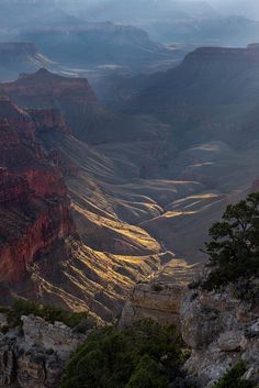 North Rim, Colorado River and Grand Canyon | Arizona (by adonyvan)
