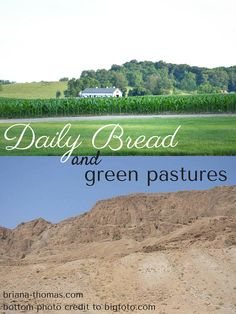 Daily Bread and Green Pastures...were the pastures of Israel really belly-deep alfalfa, like we Westerners often picture from the words of Psalm 23?