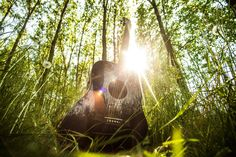 #black #forest #grass #guitar #ibanez #music #ray of sunshine #string instrument #sunlight #trees
