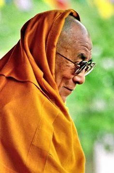 Dalai Lama Lo amo, mi meta en esta vida es poder reencarnarme en la proxima vida u otras y ser un lama.....nada facil pero possible.