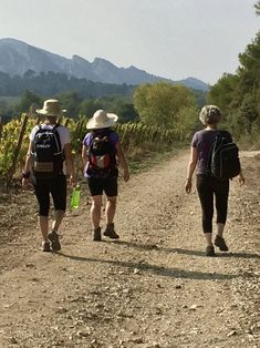 Women's hiking trip in France. See my Provence itinerary.