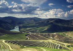 Portugal: Top Travel Destination For 2017 - Modern Healthy Life Douro Portugal, Gothic Cathedral, Douro Valley, Port Wine, Top Travel Destinations, Most Beautiful Cities, Pilgrimage, Natural Wonders, City