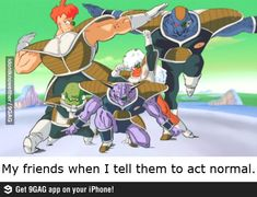 LOL only dragon ball z kai wachters would get this