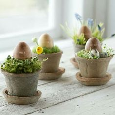 Little Easter Pots...