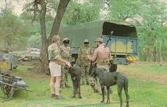 Rhodesia: The Ultimate Photographic Resource! - Page 7 - The FAL Files Military Weapons, Thug Life, My Heritage, Zimbabwe, Old Boys, Cob, South Africa, Birth, Southern
