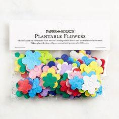 Plantable Flowers | Paper Source