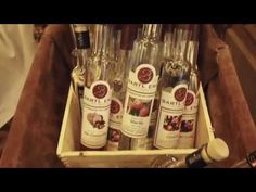 TRAVEL VLOG #1: Hotel Alpine Palace Saalbach-Hinterglemm: Food, Wellness... Travel Vlog, Vodka Bottle, Palace, Wellness, Drinks, Youtube, Food, Drinking, Beverages