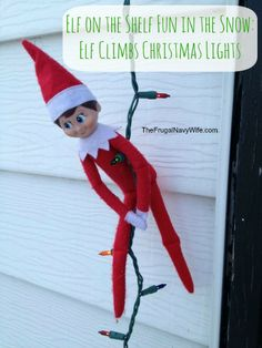 Elf on the Shelf Fun in the Snow: Elf Climbs Christmas Lights #elfontheshelf #elfshelf #christmas