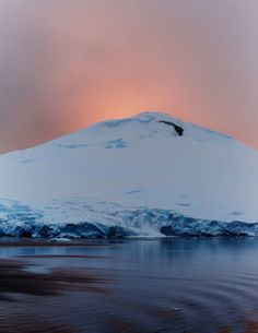 Antarctica photographed by Collin Hughes Lets Get Lost, Cool Photos, Amazing Pictures, Antarctica, Mother Earth, Beautiful Places, Amazing Places, Wilderness, Places To Go