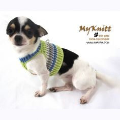Soft pet and dog harnesses handmade by Myknitt in cute colorful mint green. #myknitt #pet #chihuahua #handmade #knit #fashiondog #dogcouture #dogclothez