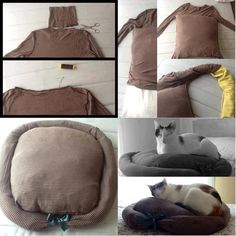 DIY cat or dog pillow from old tutleneck.
