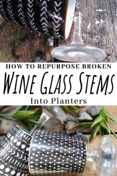 Add a touch of class and whimsy to your décor with these gorgeous DIY broken wine glass stem planters. #DIYPlanters #WineglassRepurpose #ACraftyMix #ClassicDecor #BlackandWhite #UniquePlanters Artificial Succulents, Faux Succulents, Planting Succulents, Pretty Mugs, Small Space Gardening, Indoor Gardening, Wine Glass Crafts, Diy Planters, Succulent Planters