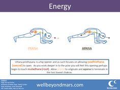 asana of the week  janu sirsasana  yoga asanas yoga