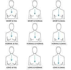How the décolleté line can increase/decrease when the space between collar bone and beginning of the bust stays the same but the bust size changes