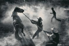 George Burgin, photographer,  Bucking Horse Sale, Miles City, Montana, 2012