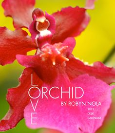 Orchid Love: 2013 Orchid Flower Desk Calendar by Robyn Nola