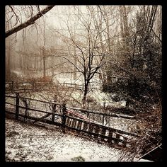 Twitter follower Jason Lewis captured this pretty shot of the snow lightly falling in #BucksCounty.