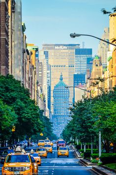 Park Avenue, New York City