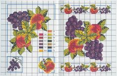 Gallery.ru / Фото #7 - Fruits et Legumes - Mongia