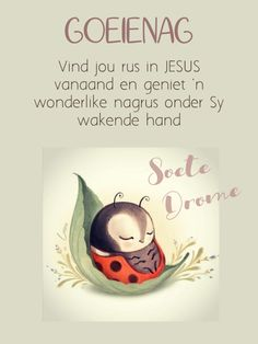 Evening Greetings, Good Night Messages, Goeie Nag, Good Night Sweet Dreams, Afrikaans, Good Morning, Inspiration, Lifestyle, Quotes