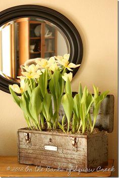 8 besten seasons spring bilder auf pinterest bl ten fr hling und balkon. Black Bedroom Furniture Sets. Home Design Ideas