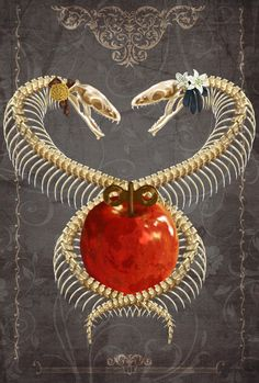 replace the apple with something else like an anatomical heart