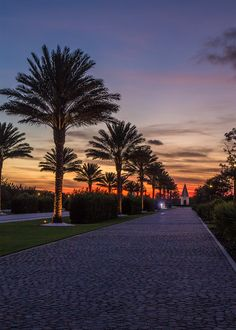 """Aisle of Palms"" Alys Beach, Florida  One of the most beautiful places in the U.S. Go 30A!"