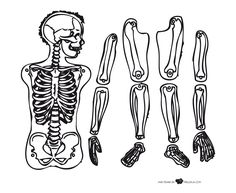 Recortable esqueleto - Dibujalia - Dibujos para colorear ...