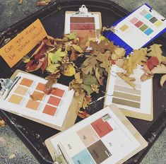 Colour matching autumn materials. #eyfs #eyfsideas #outdoorlearning