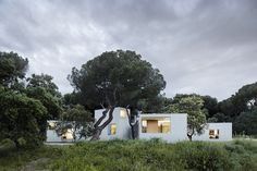 Love! Like! Share! FRPO - MO house (house in the woods), Madrid 2012. Photos...