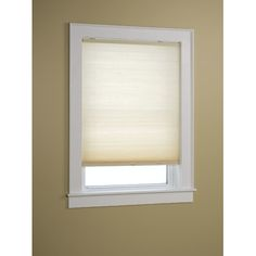 """Symple Stuff Cordless Indoor Cellular Shade Color: Natural, Size: 43"""" W x 64"""" L"""