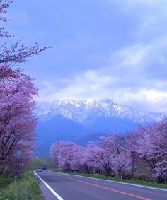 Beautiful Hokkaido - Japan | Full Dose